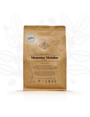 Monsoon Malabar Inde
